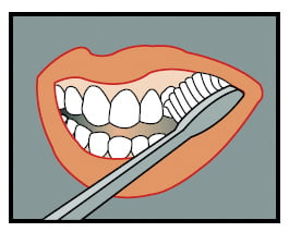 Place the bristles at a 45 degree angle to the teeth at the gumline.