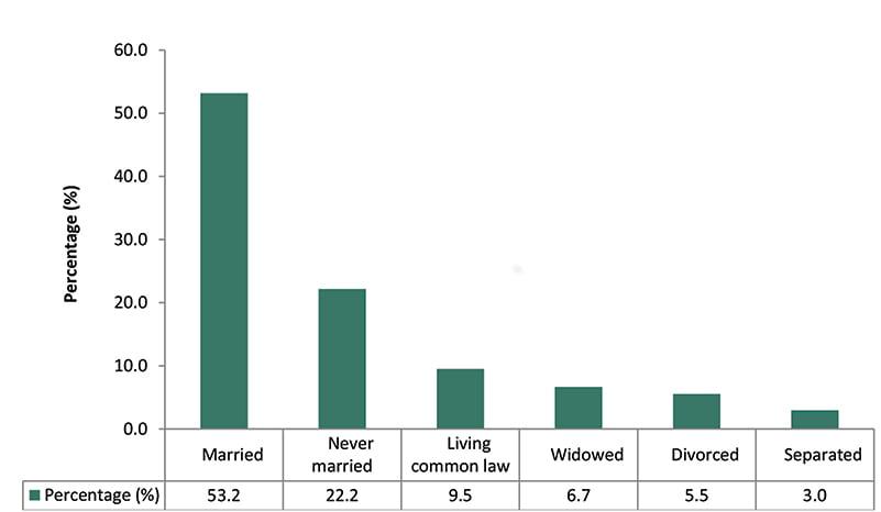 Marital Status, 15 Years and Over, Haldimand and Norfolk, 2016