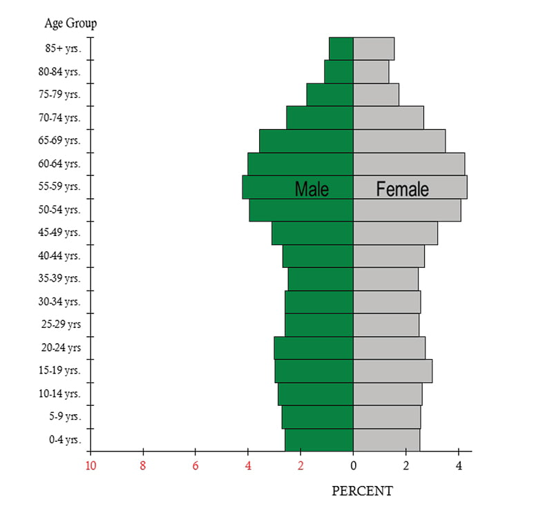 Population Pyramid by Age and Sex, Haldimand and Norfolk Counties Combined, Haldimand and Norfolk County, 2016