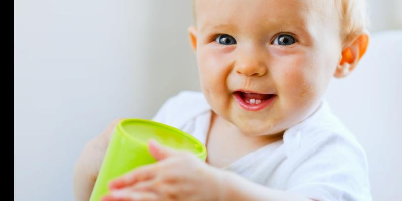 Healthy Babies Healthy Children Program