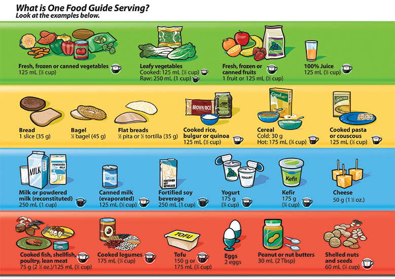 One food guide serving