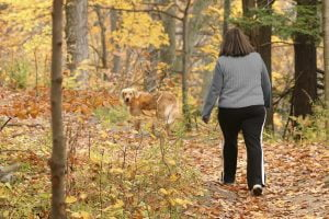 Woman walking through the woods with her dog in the fall